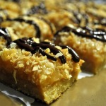 Caramel Coconut Cluster Bars ~ Baked Sunday Mornings